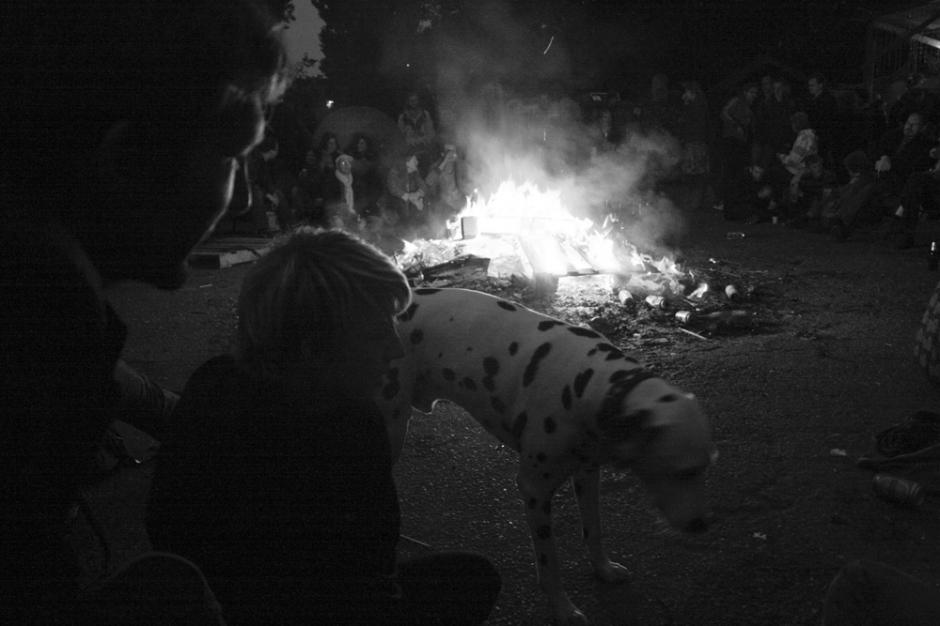 dogdayz_3